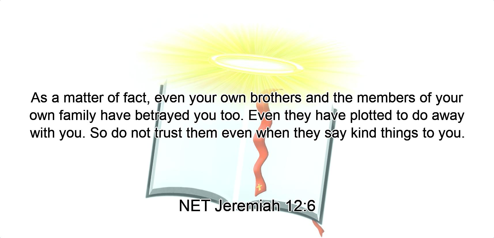 As a matter of fact,  even your own brothers and the members of your own family have betrayed you too. Even they have plotted to do away with you.  So do not trust them even when they say kind things  to you.